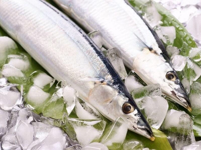 Cara Membekukan Makanan Seperti Ikan